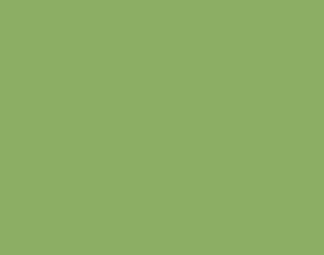 https://www.virtualstars.nl/wp-content/uploads/2021/08/Logo-Wonderwissel-zonder-slogan-groen.png
