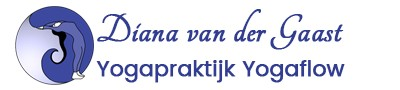 https://www.virtualstars.nl/wp-content/uploads/2021/09/yogaflow-logo-90x400-1.jpg